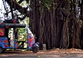 [Les dimanches de Pure-beauté]#33 : le Rickshaw Run ou comment traverser l'inde pour la bonne cause