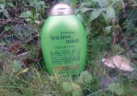 Le shampoing tea tree mint OGX ®