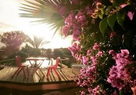 [Les dimanches de Pure-beauté] #74 : Un été 100 % détente ! Nos conseils voyage pour vos vacances